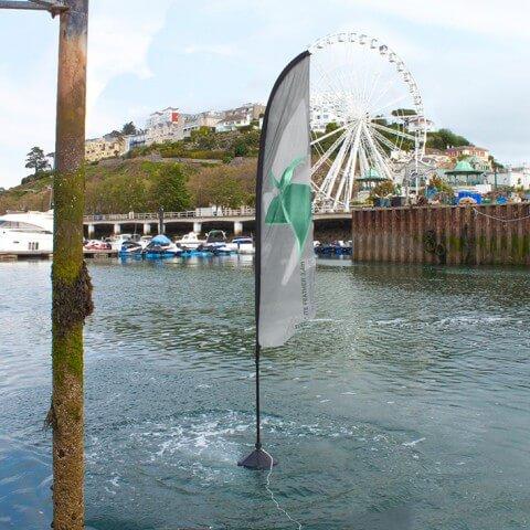 Zoom aqua flag feather - outdoor - example